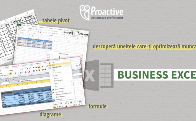 CURS BUSINESS EXCEL