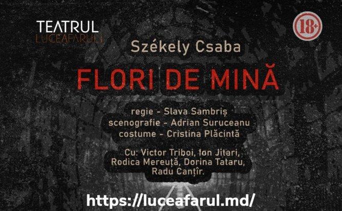 """""""Flori de mină"""" de Csaba Szekely"""