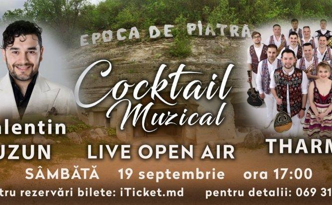 Cocktail Muzical Editia 11