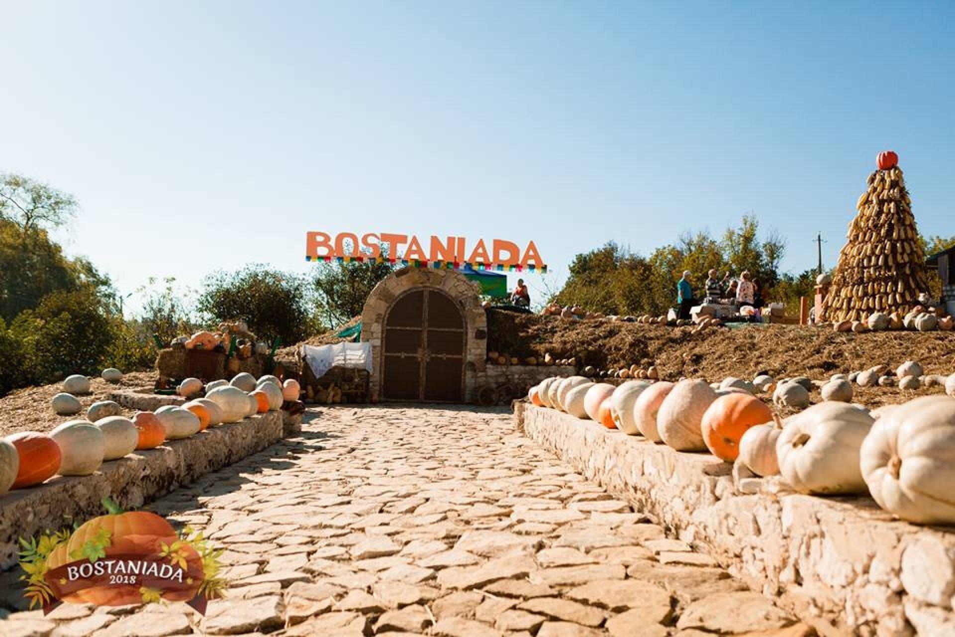 Festivalul Bostaniada 2019
