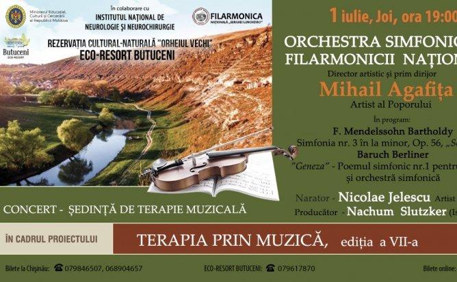 Concert-Sedință de terapie muzicală