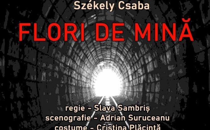 FLORI DE MINA de Szekely Csaba
