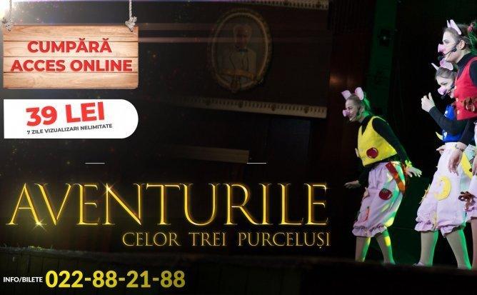 Aventurile celor Trei Purcelusi - Spectacol pentru Copii (Acces Bilet - 39 lei)