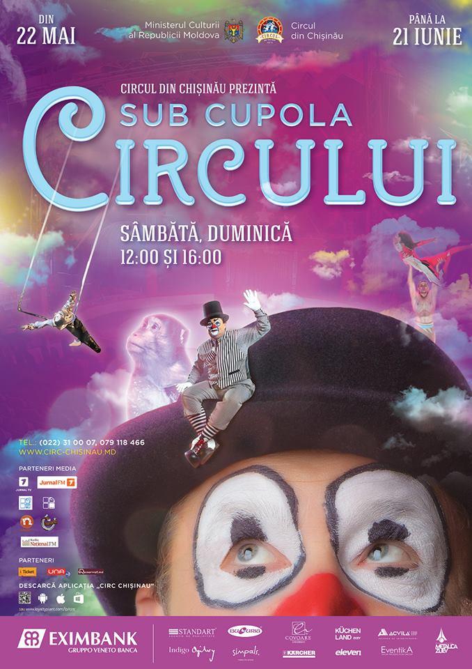 sub cupola circului
