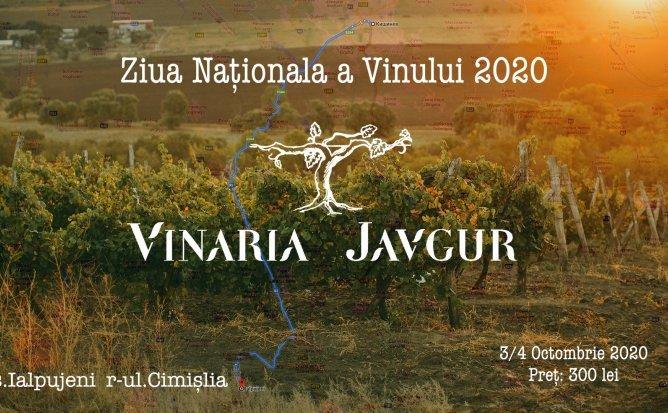Ziua Nationala a Vinului impreuna cu Vinaria Javgur