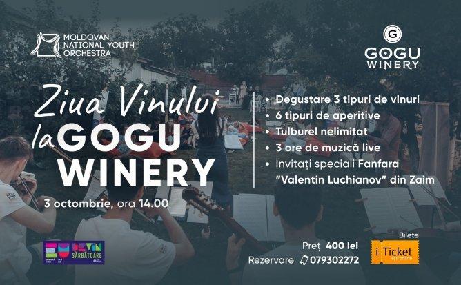 Ziua Vinului la Gogu Winery