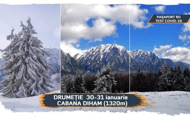 Drumeție 30-31 ianuarie | Cabana Diham 1320 m